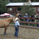 Horsewhisperer at Mica Mountain Lodge